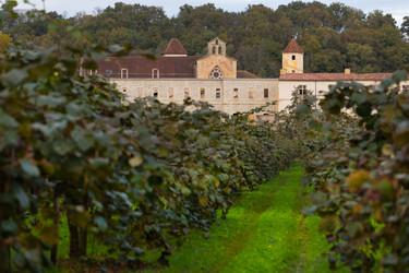 L'Abbaye de Sorde et son champ de kiwis